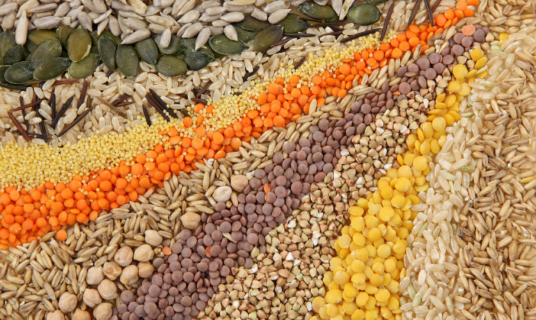 Nutritional adequacy in plant-protein based diets is dependent on diversity of plant sources